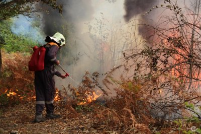 МЧС предупреждает: на Южном Урале сохраняется высокая угроза природных пожаров!