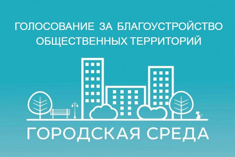 Почти 9 млн россиян проголосовали за территории и дизайн-проекты благоустройства