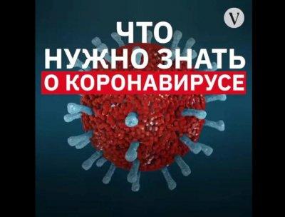 Что нужно знать о коронавирусе?
