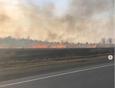 Алексей Текслер призвал жителей области строго соблюдать особый противопожарный режим