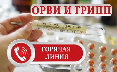 «Горячая линия» по вопросам ОРВИ и гриппа