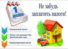 Обращение к жителям города Сим о необходимости уплаты налогов