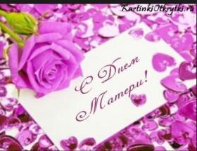 Дорогие женщины! Примите самые тёплые и искренние поздравления с нежным, ласковым и светлым для всех праздником Днём Матери!
