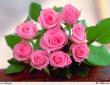 Милые женщины! Поздравляем Вас с Международным женским днем – 8 Марта!