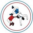 Карталинские борцы стали призерами турнира, посвященного памяти В.Я. Скиба