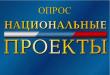 Опрос по реализации национальных проектов