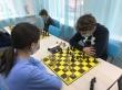 Цифровой ход конем: при помощи камеры «Ростелекома» на Южном Урале прошел первый дистанционный шахматный турнир