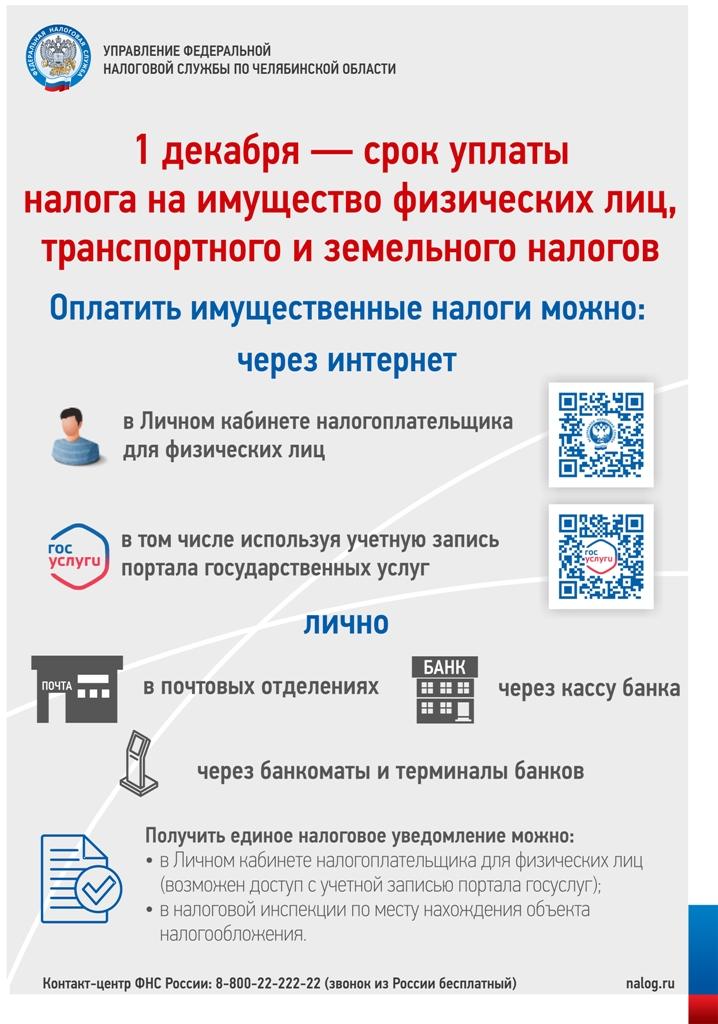 Картинки по запросу картинка 1 декабря срок уплаты налогов