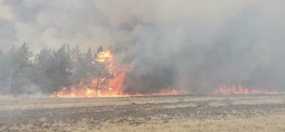 В Увельском районе 8 июля произошел природный пожар вблизи с.Дуванкуль