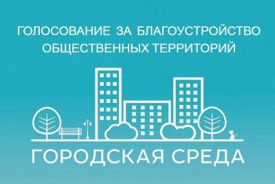 Почти 10 млн россиян приняли участие в голосовании за объекты благоустройства