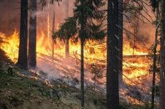 Памятка населению о мерах пожарной безопасности в весенне-летний пожароопасный период.