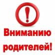 Отдел МВД России по Ашинскому району обращается к родителям, отправляющим детей на отдых